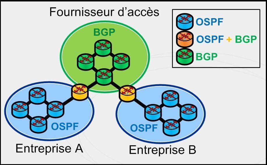 Routage dynamique - IGP + EGP