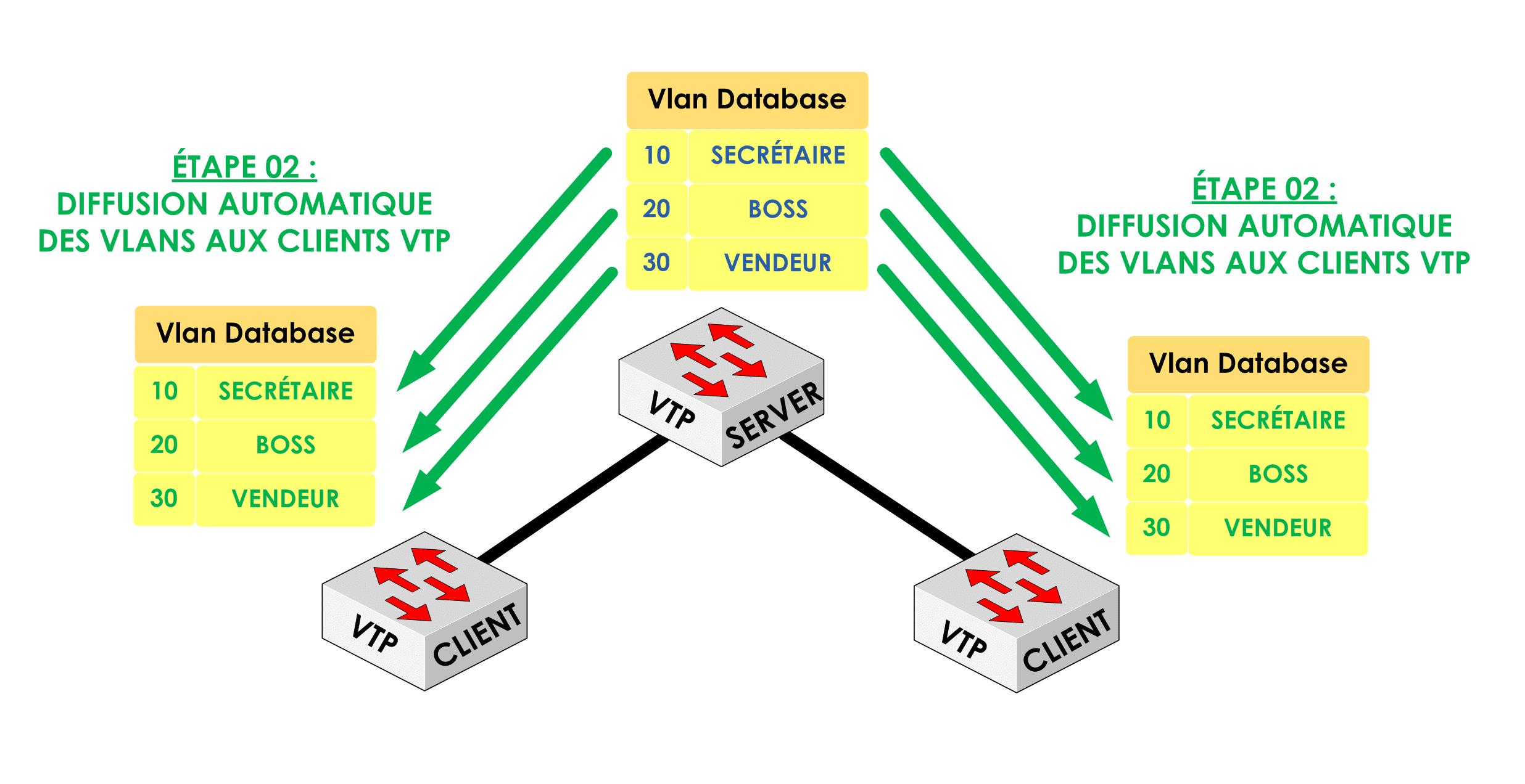 Etape 02 : Le serveur VTP vas diffuser la mise à jour aux clients :