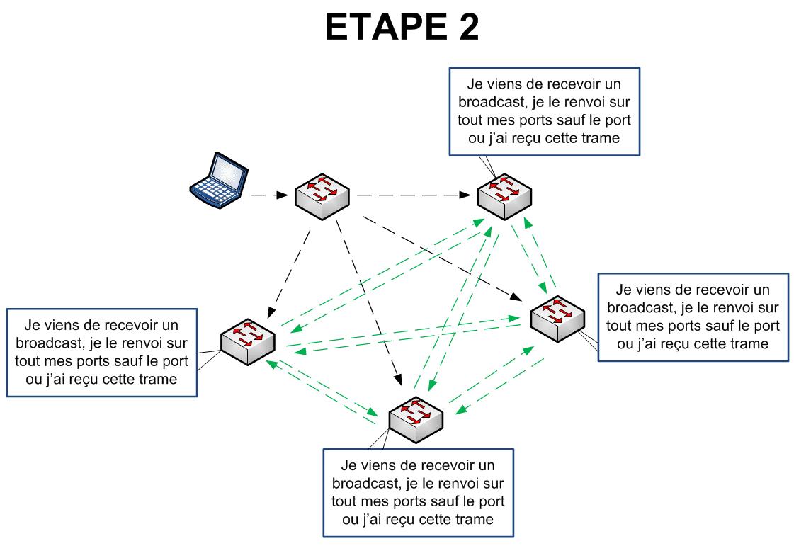 Spanning Tree - Etape 2
