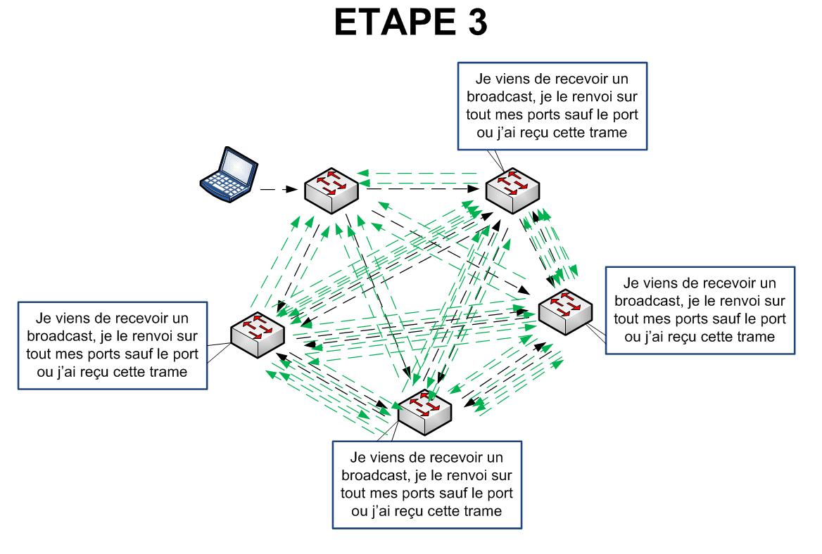 Spanning Tree - Etape 3