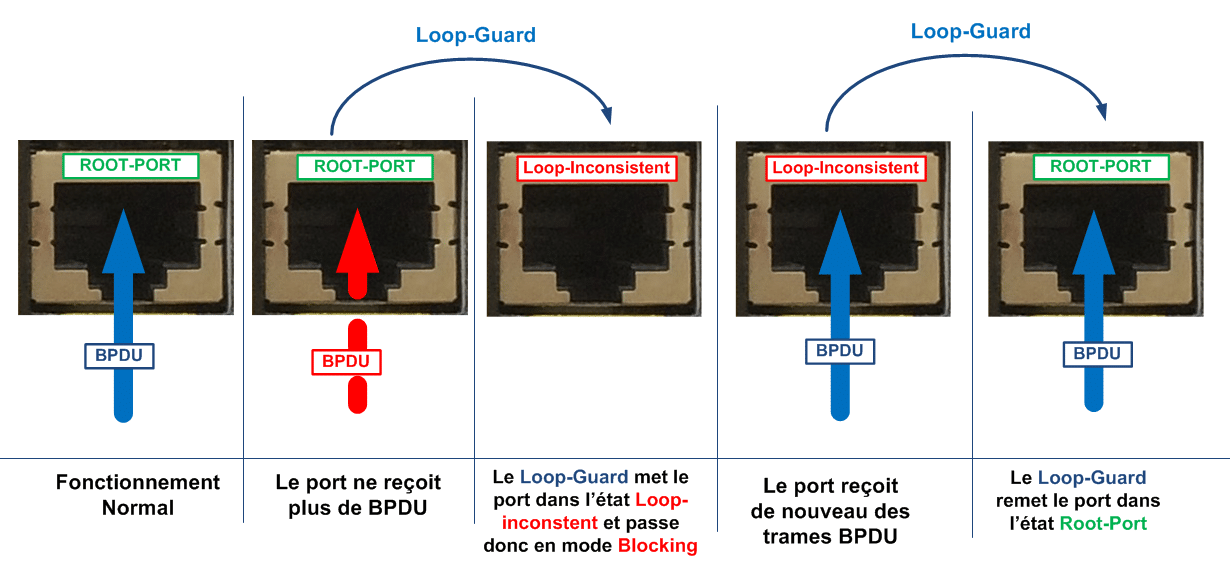 Etats des ports avec le Loop Guard