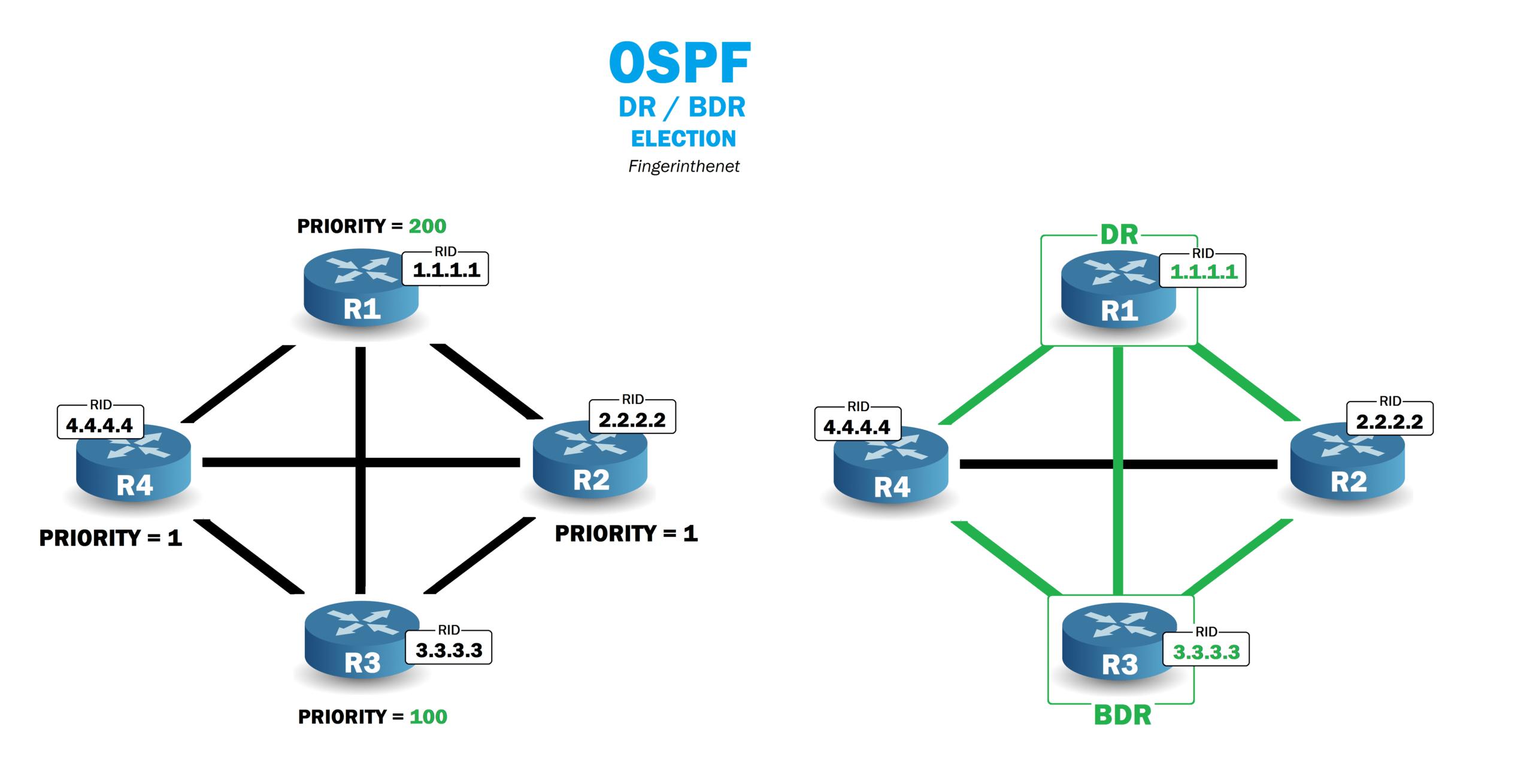 Élection du DR et BDR